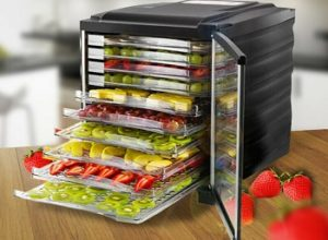 10 Best Food Dehydrator Reviews & Buyer's Guide for 2020