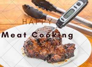 10 Best Meat Thermometer Reviews & Buyer's Guide in 2020