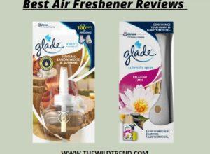 10 Best Air Freshener Reviews & Buyer's Guide in 2020