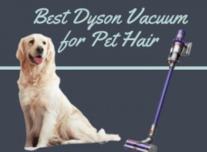 6 Best Dyson Vacuum for Pet Hair in 2020 – Buyer's Guide