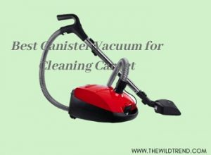 Top 7 Best Canister Vacuum for Carpet in 2020