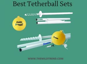 10 Best Tetherball Sets in 2020 – Buyer's Guide