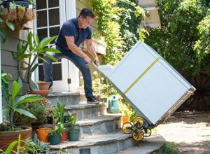 10 Best Stair Climbing Carts & Buyer's Guide for 2020