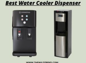 Top 10 Best Water Cooler Reviews & Buyer's Guide for 2020