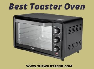 Top 10 Best Toaster Oven Under $100 Reviews for 2020