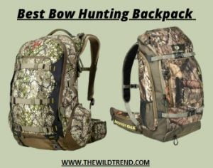 Best Bow Hunting Backpack Reviews in 2021