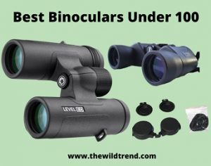 10 Best Binoculars Under $100 in 2021 – Buyer's Guide