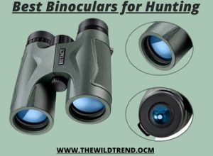 10 Best Binoculars for Hunting in 2020 – Buyer's Guide
