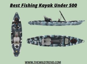 10 Best Kayak for Fishing Under $500 – Buyer's Guide