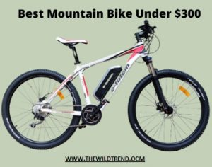 10 Best Mountain Bikes Under $300 in 2021 – Buyer's Guide