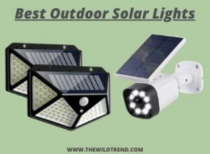 11 Best Outdoor Solar Lights in 2020 – Buyer's Guide