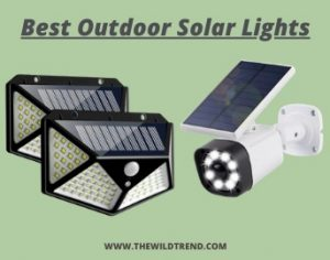 11 Best Outdoor Solar Lights in 2021 – Buyer's Guide