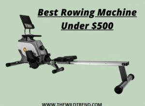 10 Best Rowing Machines under $500 Reviews for 2020
