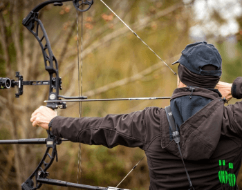 Compound Bows Reviews - Under $500