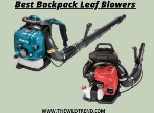 Top 10 Best Backpack Leaf Blowers Reviews for 2020