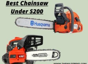 Top 10 Best Chainsaw Under $200 for 2020