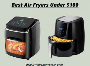 10 Best Air Fryers Under $100 Reviews for 2020
