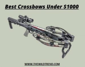 10 Best Crossbow Under $1000 Reviews for 2021