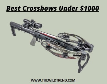 Crossbow Under $1000