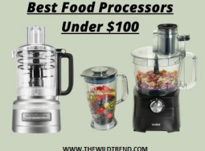 10 Best Food Processors under $100 Reviews for 2020