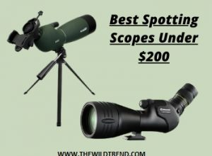 10 Best Spotting Scopes under $200 in 2020 – Buyer's Guide