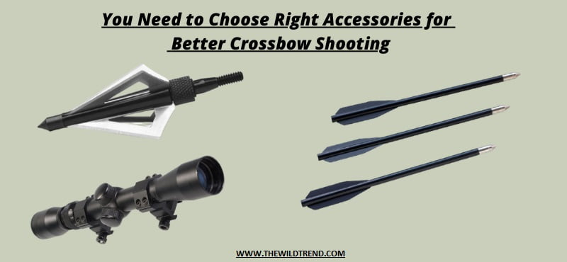 Crossbow Essential Accessories