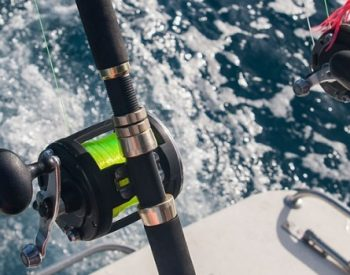 Understand the Effects of the Weather on Sea Fishing