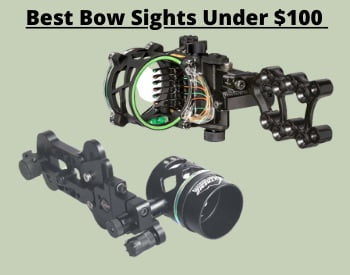 Bow Sight Reviews