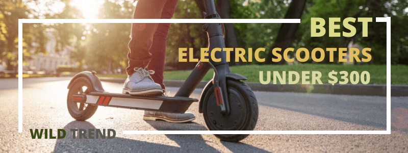 Best Affordable Electric Scooter Reviews