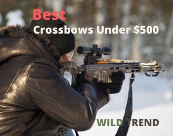 Crossbows Under 500 Reviews