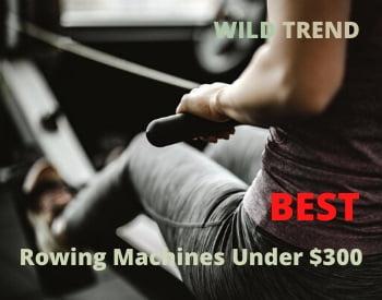 Best Rowing Machines under $300 Reviews