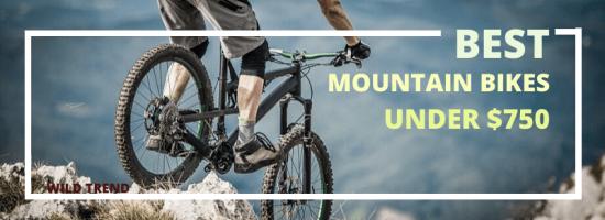 Best Mountain Bikes Under $750 Reviews 2021