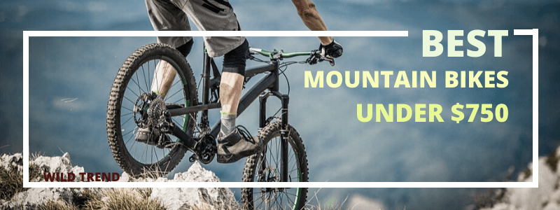 Mountain Bikes Reviews (under $750)