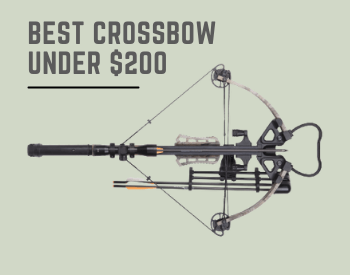 Crossbow Reviews Under $200