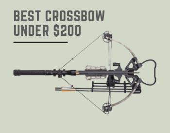 7 Best Crossbows Under $200 (In-Depth Reviews 2021)