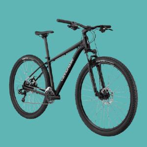 Best Hardtail Mountain Bikes Under $300