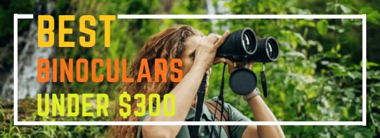 10 Best Binoculars Under $300 in 2021 – Reviews & Buyer's Guide
