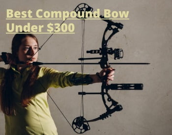 The Best Compound Bows Under $300 for 2021