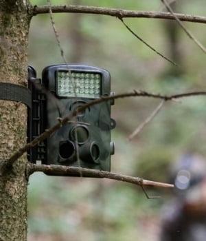 Best Trail Cameras Under $50