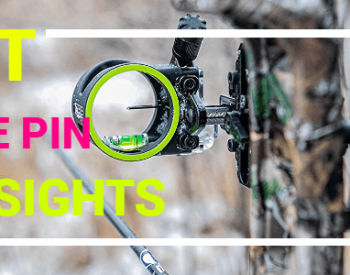 Best Single Pin Bow Sights of 2021 (Top 10 Picks)