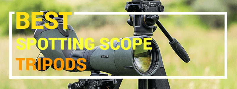 Spotting Scope Tripod Review & Buyer's Guide
